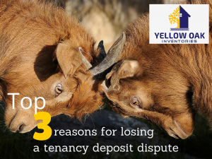 reasons for losing a tenancy deposit